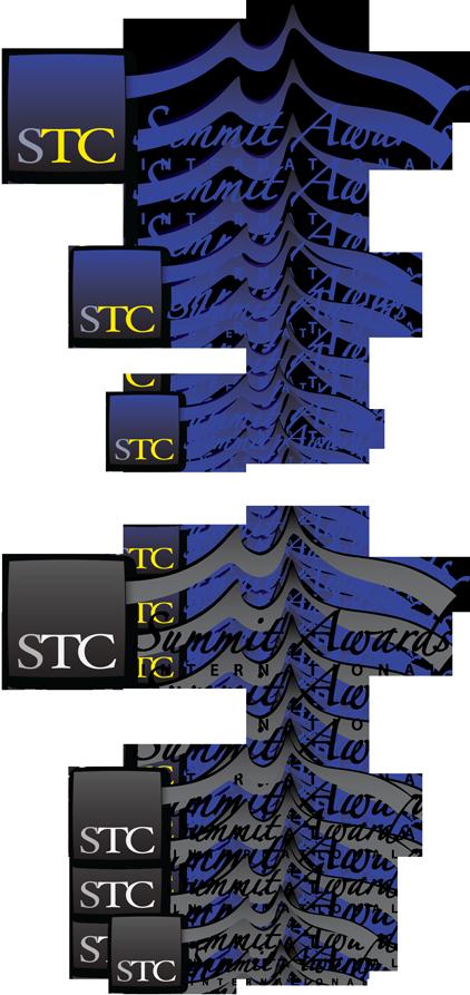 STC International Summit Award logo